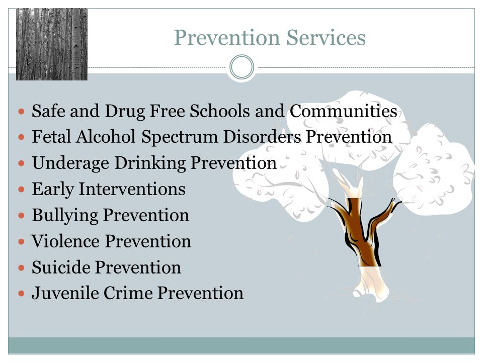Prevention Services Safe and Drug Free Schools and Communities