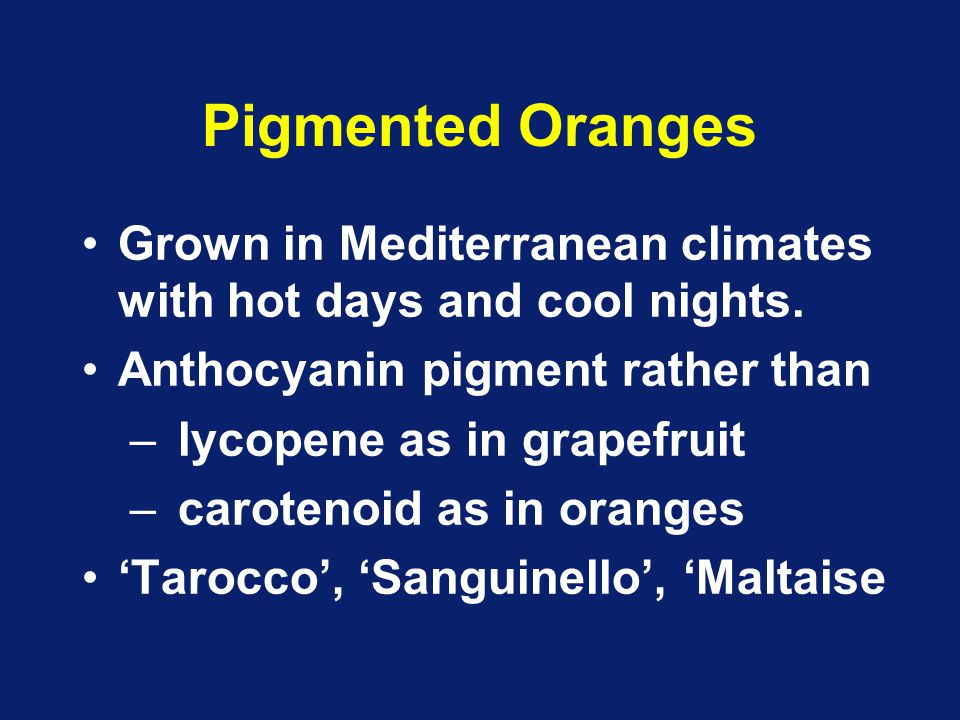 Pigmented Oranges Grown in Mediterranean climates with hot days and cool nights. Anthocyanin pigment rather than.