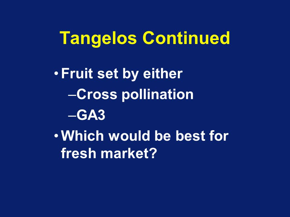 Tangelos Continued Fruit set by either Cross pollination GA3