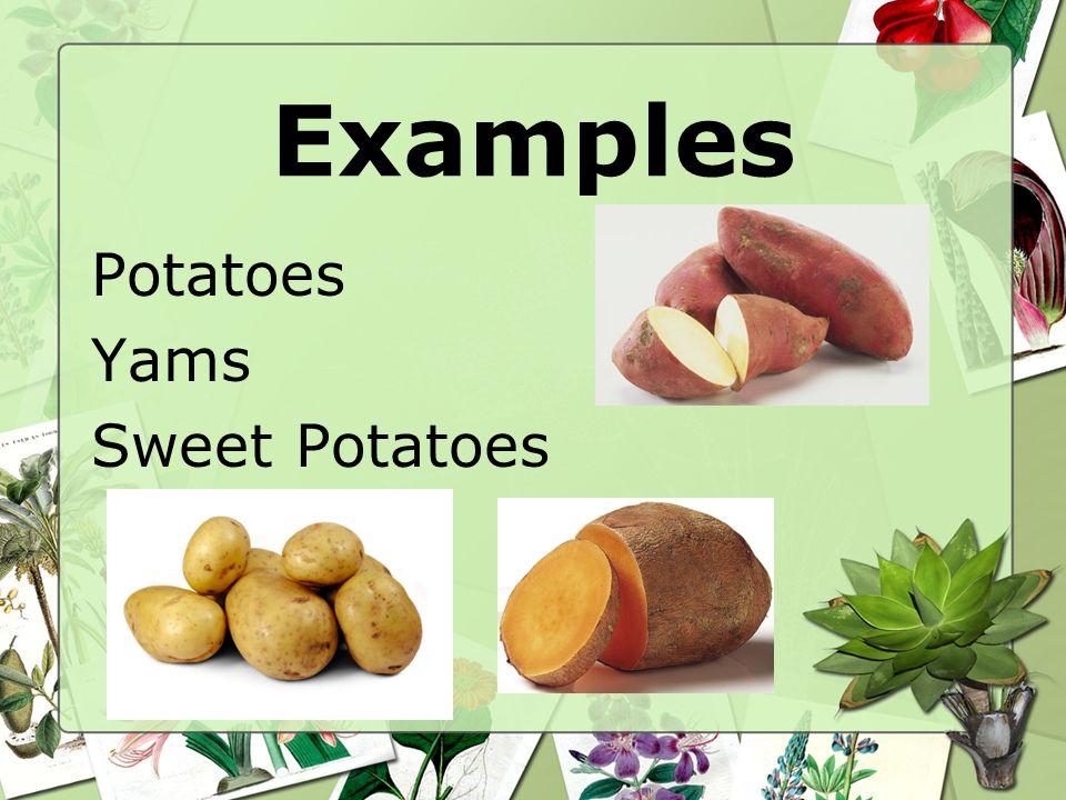 Examples Potatoes Yams Sweet Potatoes