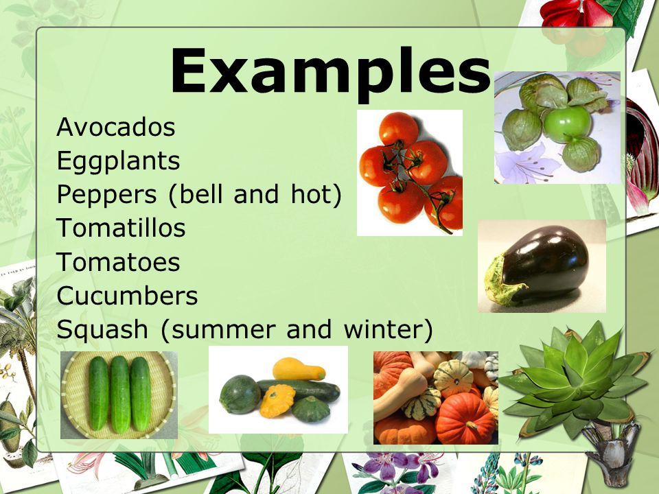 Examples Avocados Eggplants Peppers (bell and hot) Tomatillos Tomatoes