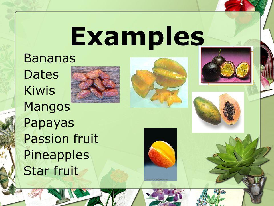 Examples Bananas Dates Kiwis Mangos Papayas Passion fruit Pineapples