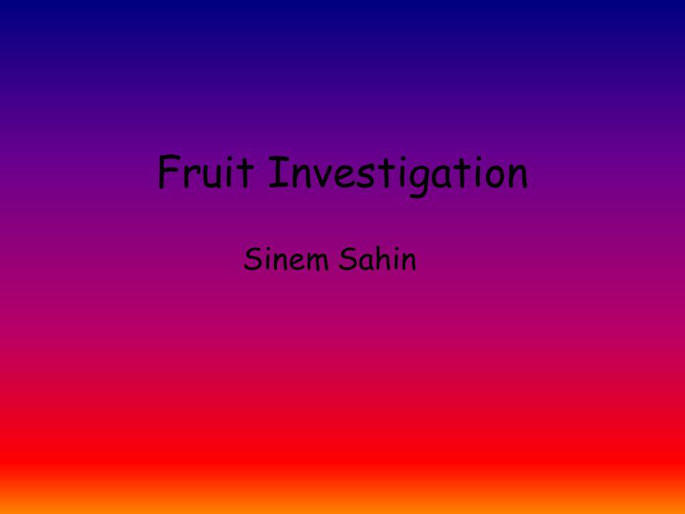 Fruit Investigation Sinem Sahin