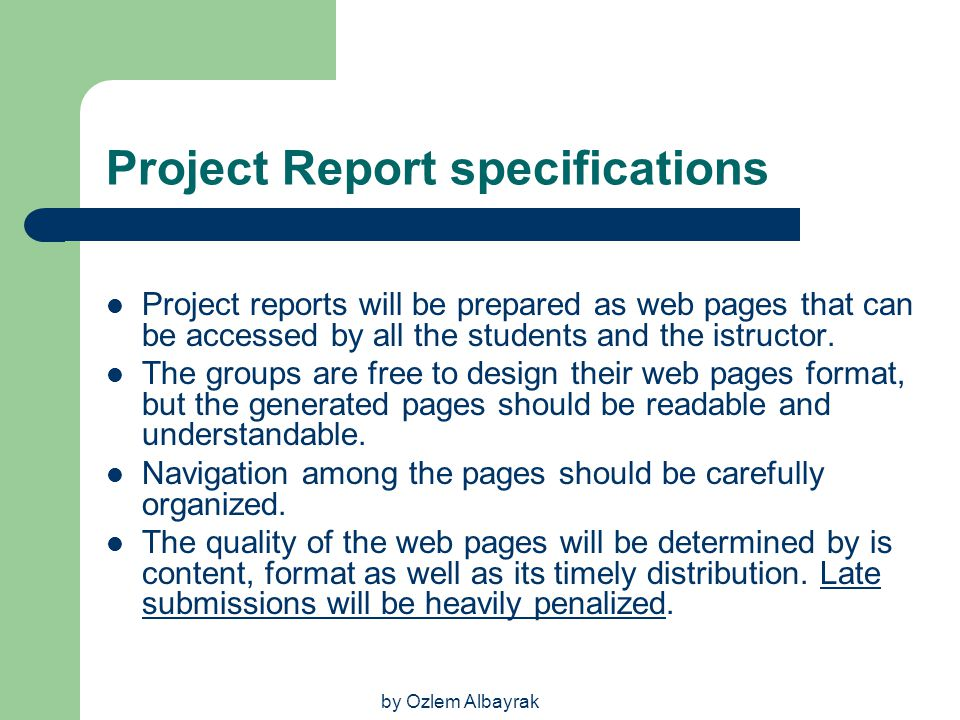 Project Report specifications