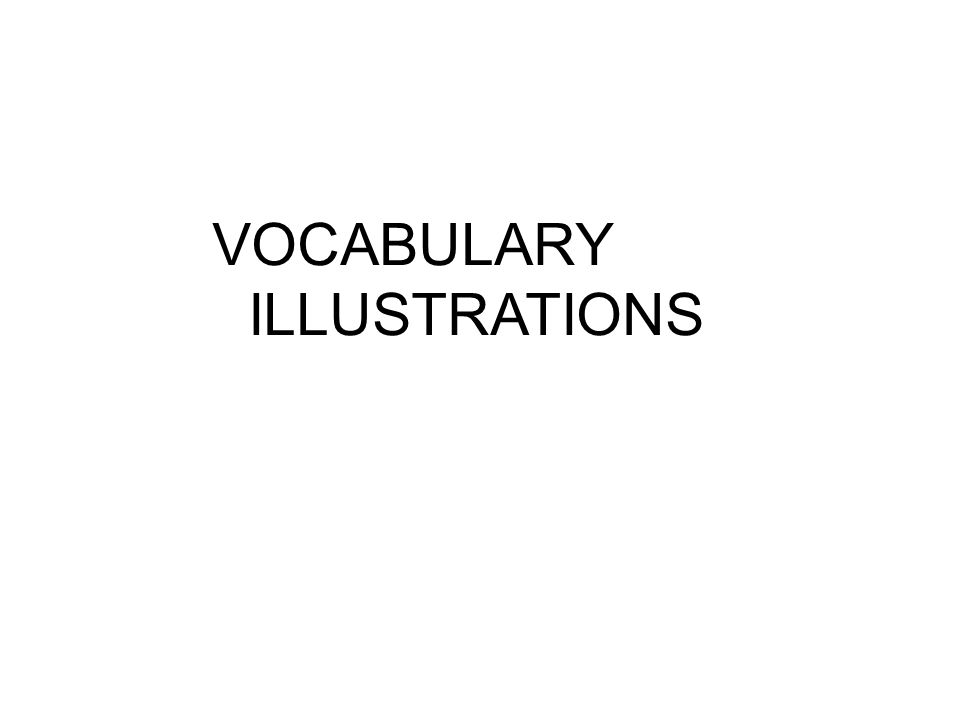 VOCABULARY ILLUSTRATIONS
