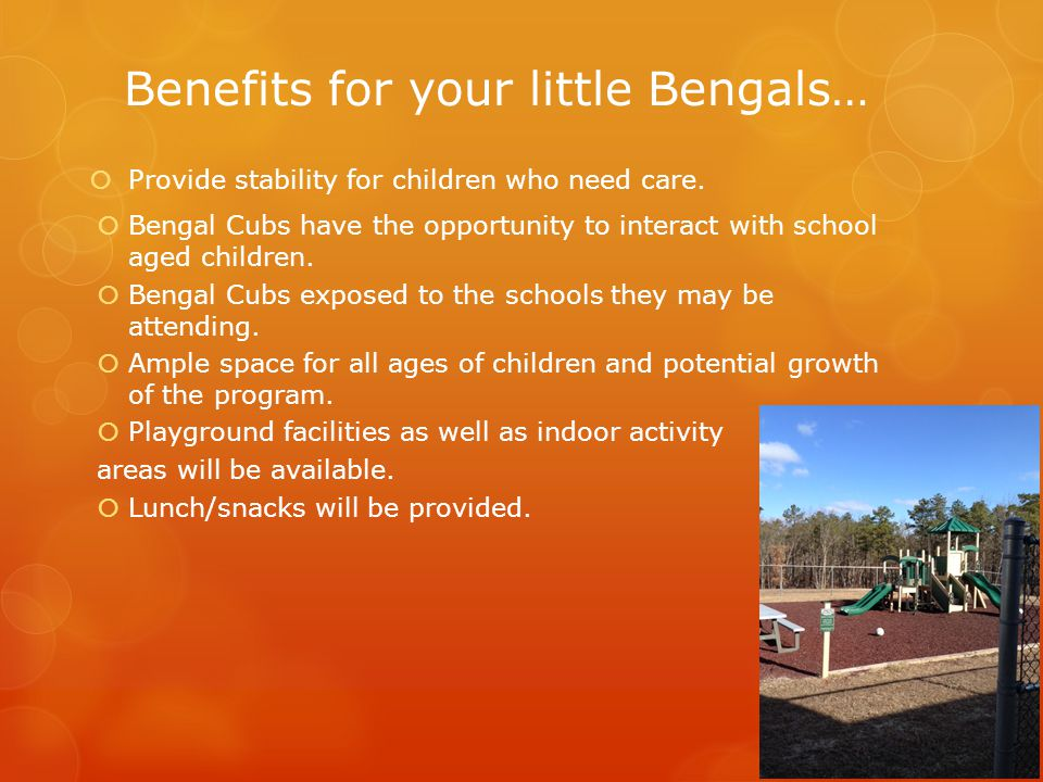 Benefits for your little Bengals…