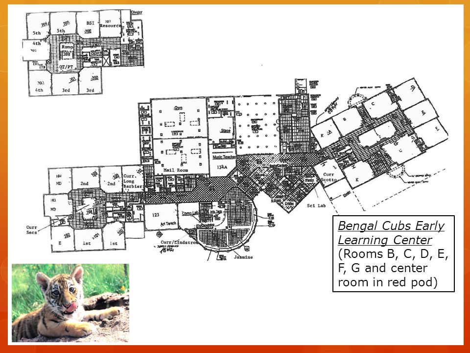 Bengal Cubs Early Learning Center