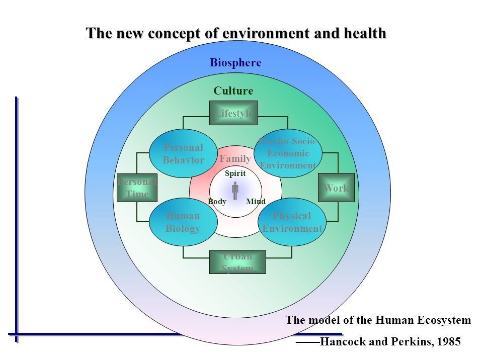 The model of the Human Ecosystem