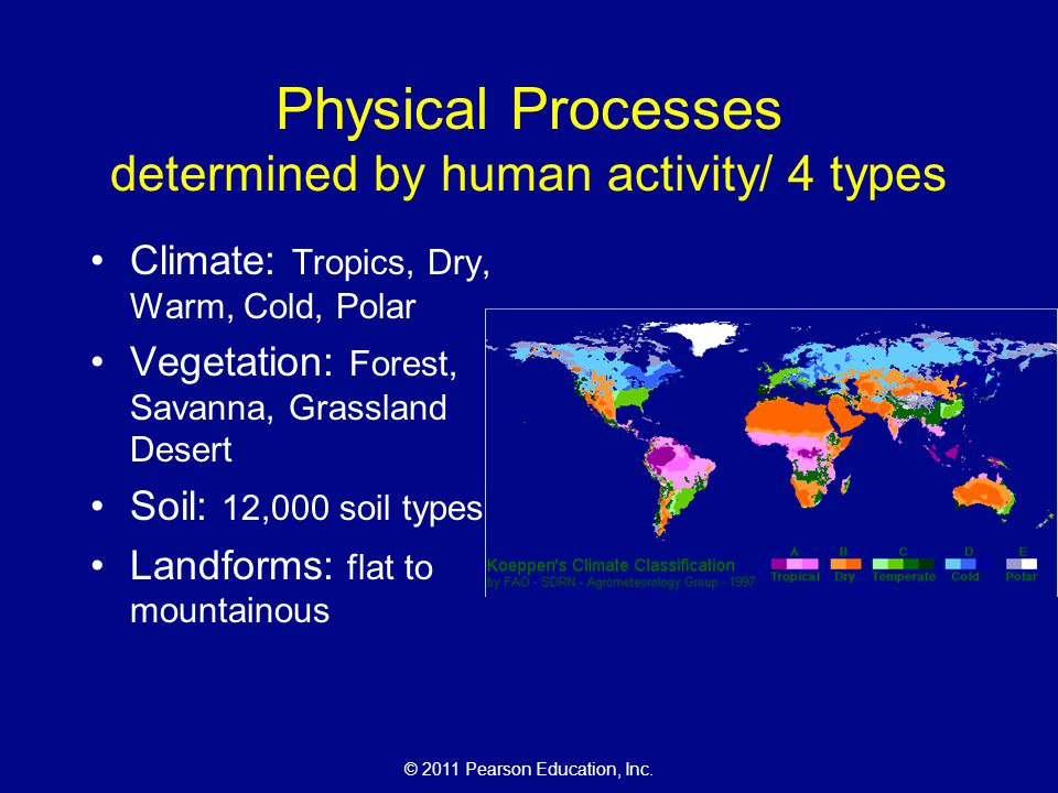Physical Processes determined by human activity/ 4 types