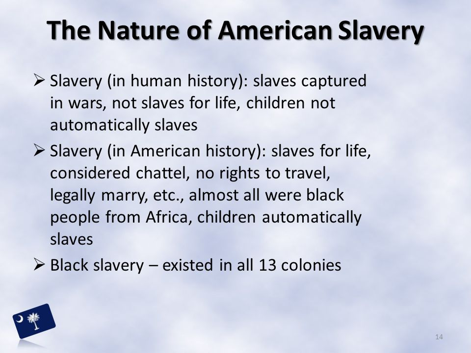 The Nature of American Slavery