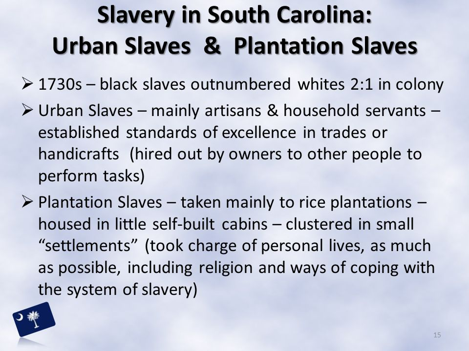 Slavery in South Carolina: Urban Slaves & Plantation Slaves