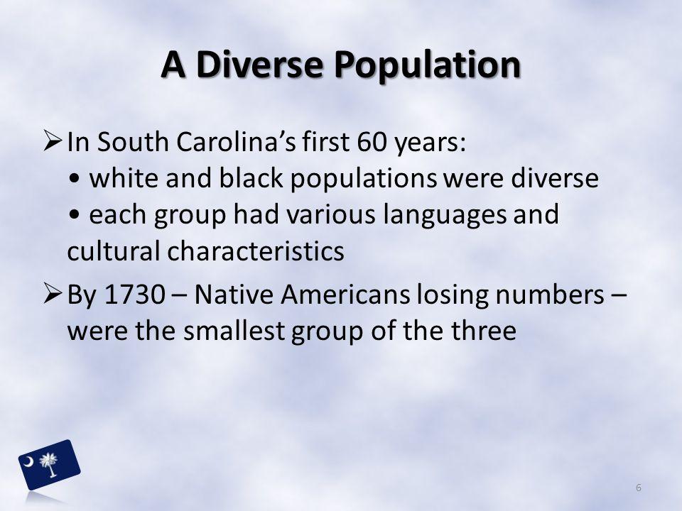 A Diverse Population