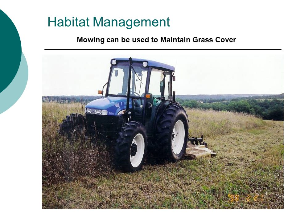 Habitat Management Mowing can be used to Maintain Grass Cover