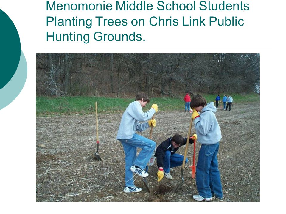 Menomonie Middle School Students Planting Trees on Chris Link Public Hunting Grounds.