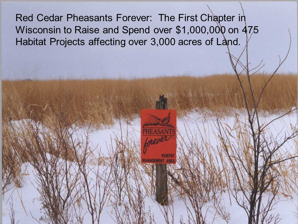 Red Cedar Pheasants Forever: The First Chapter in Wisconsin to Raise and Spend over $1,000,000 on 475 Habitat Projects affecting over 3,000 acres of Land.