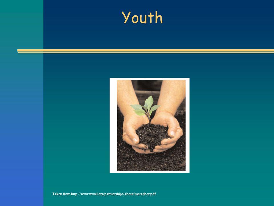 Youth Taken from http://www.nwrel.org/partnerships/about/metaphor.pdf