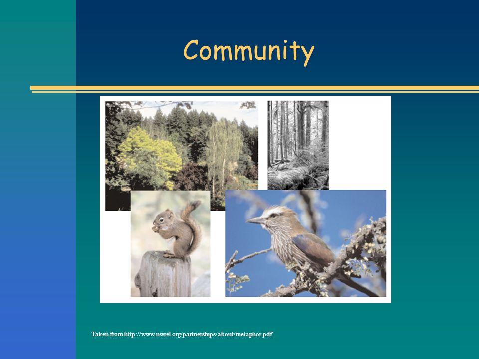 Community Taken from http://www.nwrel.org/partnerships/about/metaphor.pdf