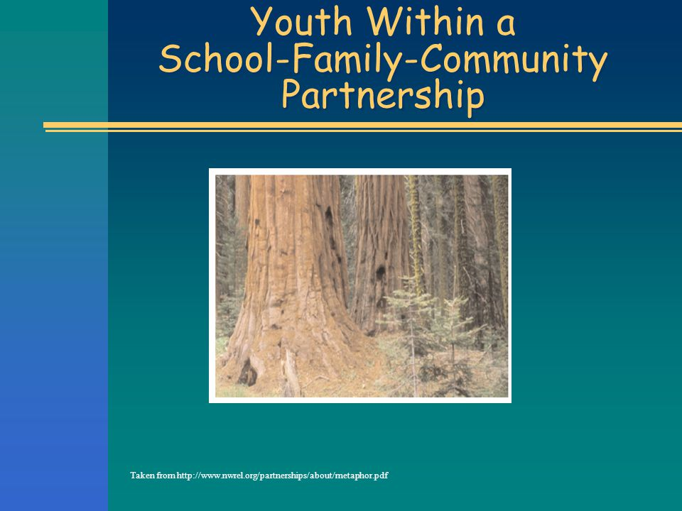 Youth Within a School-Family-Community Partnership