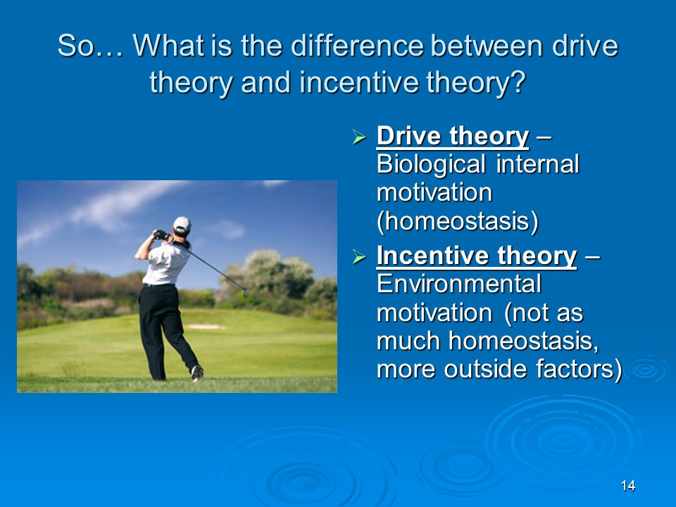 So… What is the difference between drive theory and incentive theory