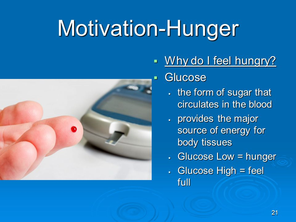 Motivation-Hunger Why do I feel hungry Glucose