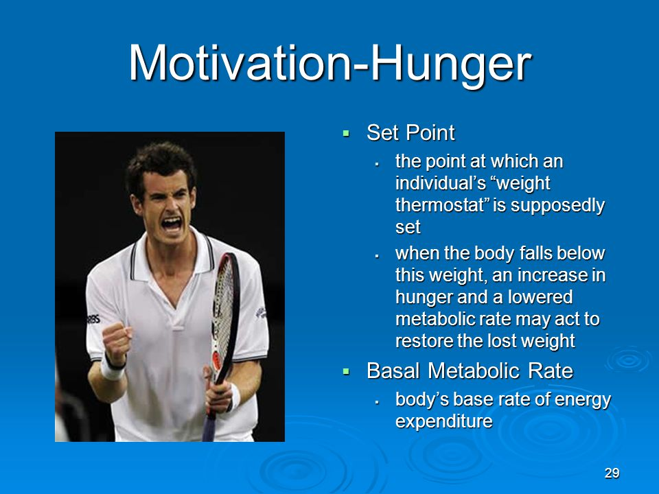 Motivation-Hunger Set Point Basal Metabolic Rate
