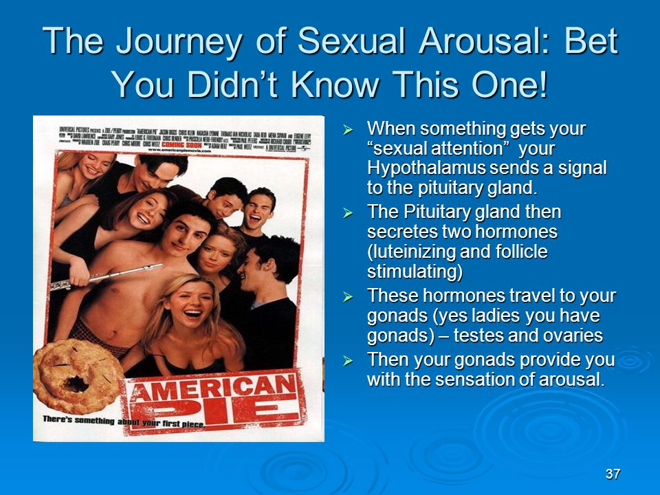 The Journey of Sexual Arousal: Bet You Didn't Know This One!