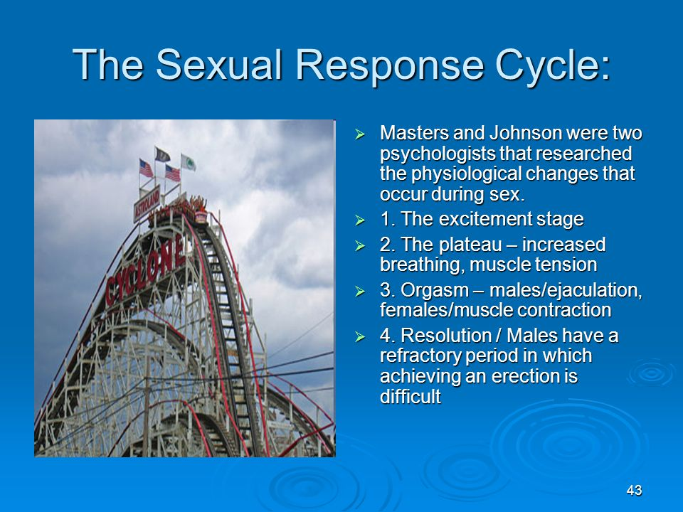 The Sexual Response Cycle: