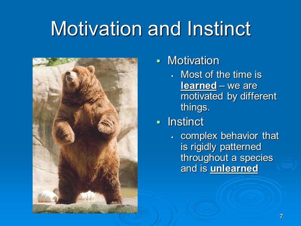 Motivation and Instinct