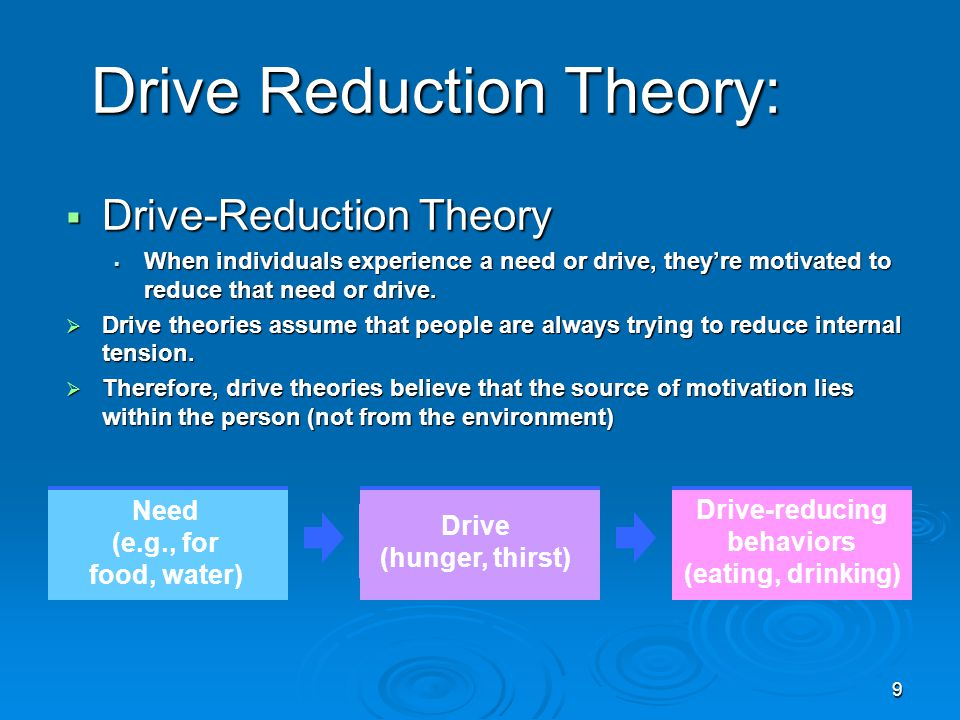 Drive Reduction Theory: