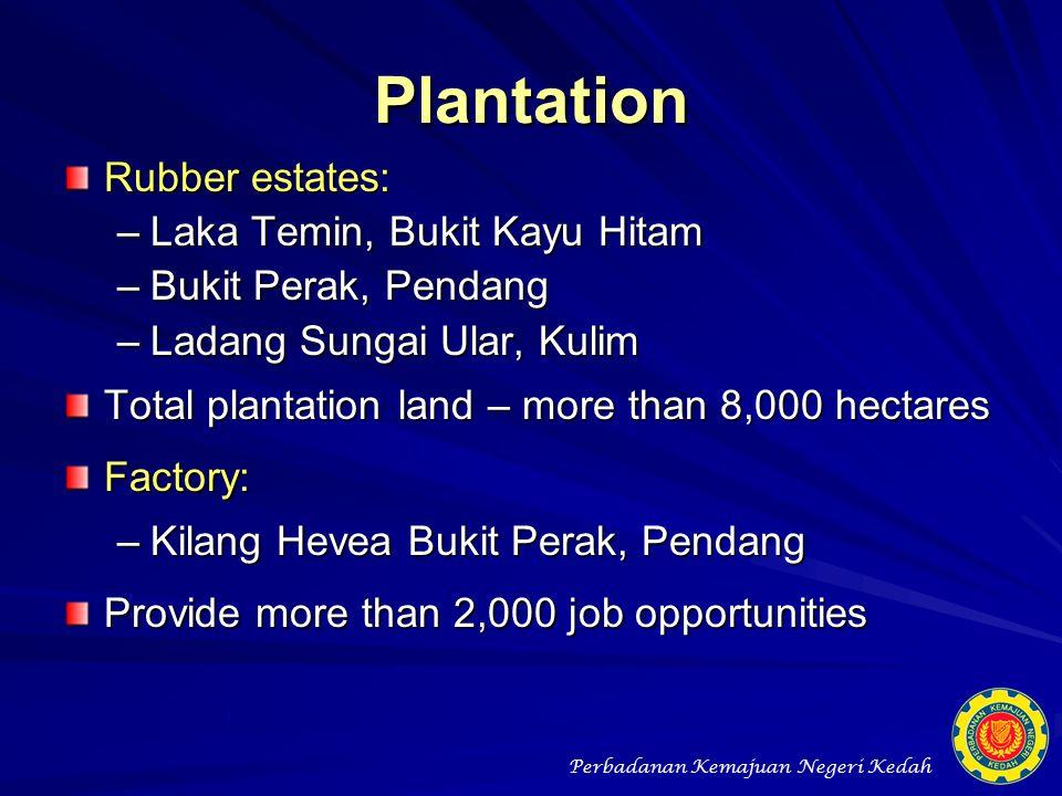 Plantation Rubber estates: Laka Temin, Bukit Kayu Hitam