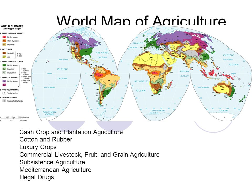 World Map of Agriculture