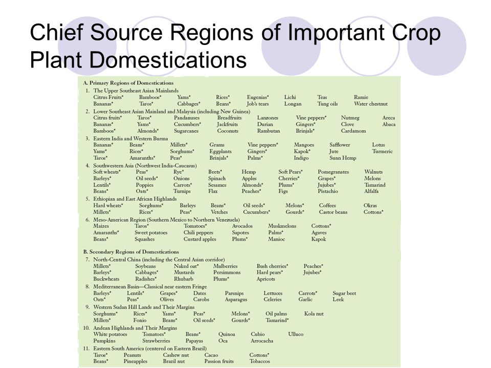 Chief Source Regions of Important Crop Plant Domestications