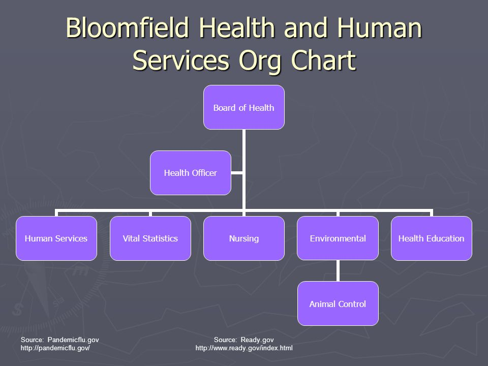 Bloomfield Health and Human Services Org Chart
