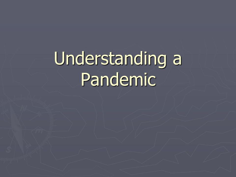Understanding a Pandemic