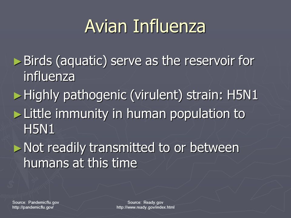 Avian Influenza Birds (aquatic) serve as the reservoir for influenza