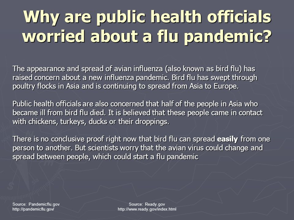 Why are public health officials worried about a flu pandemic