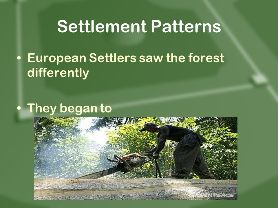 Settlement Patterns European Settlers saw the forest differently