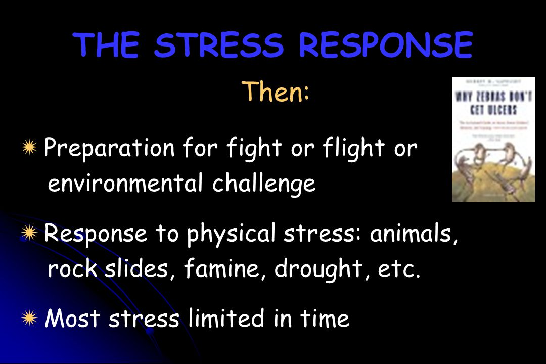 THE STRESS RESPONSE Then: Preparation for fight or flight or