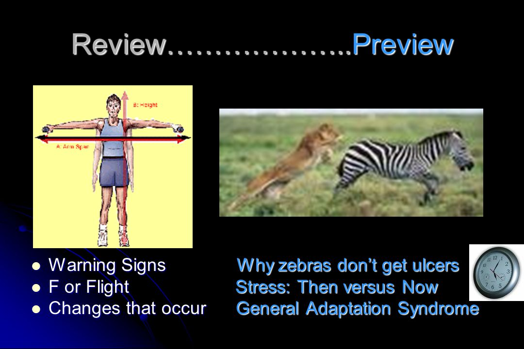 Review………………..Preview Warning Signs Why zebras don't get ulcers