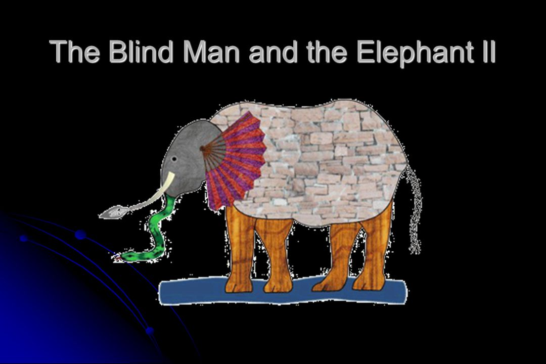 The Blind Man and the Elephant II