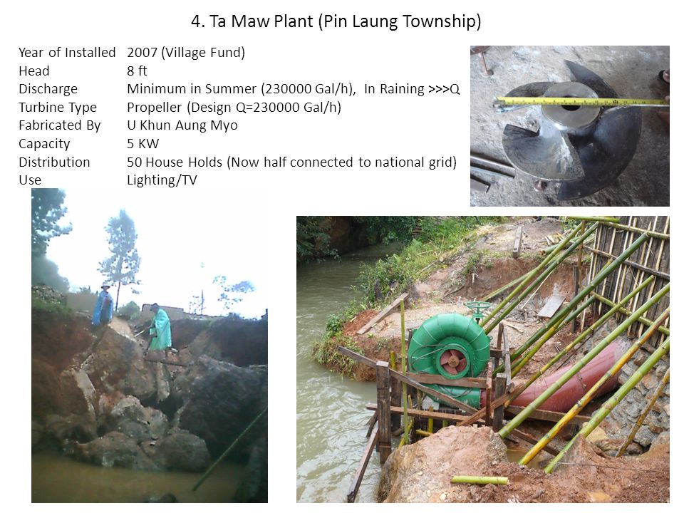 4. Ta Maw Plant (Pin Laung Township)