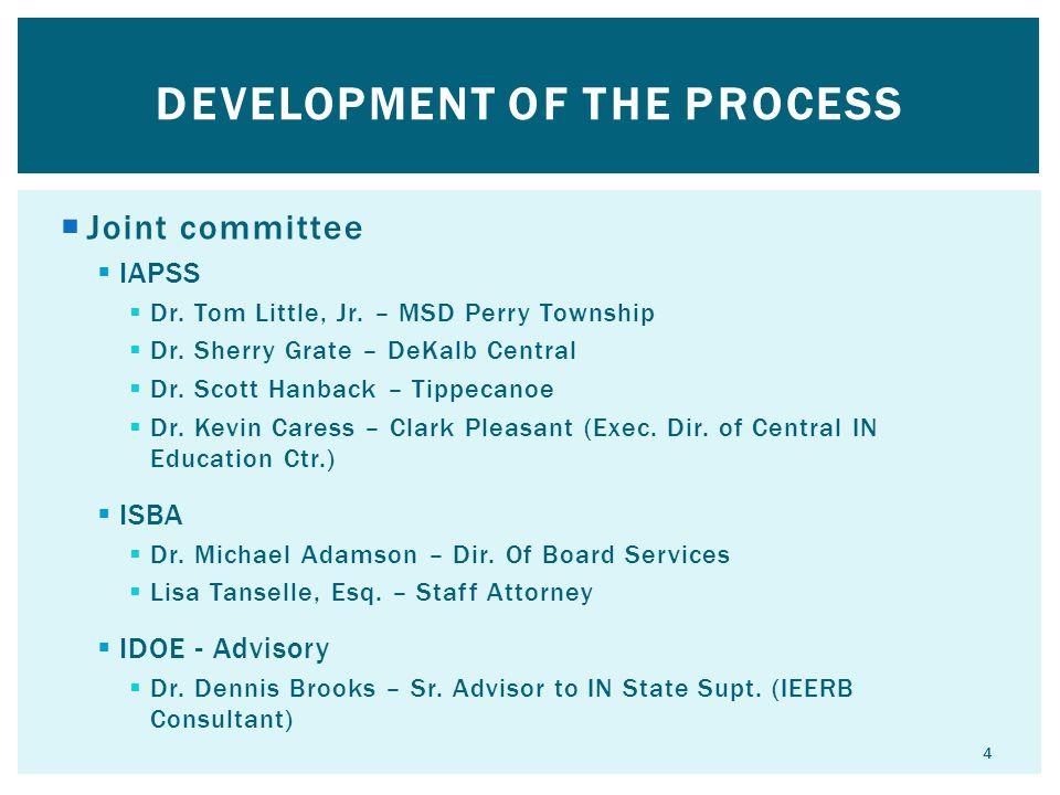 Development of the process