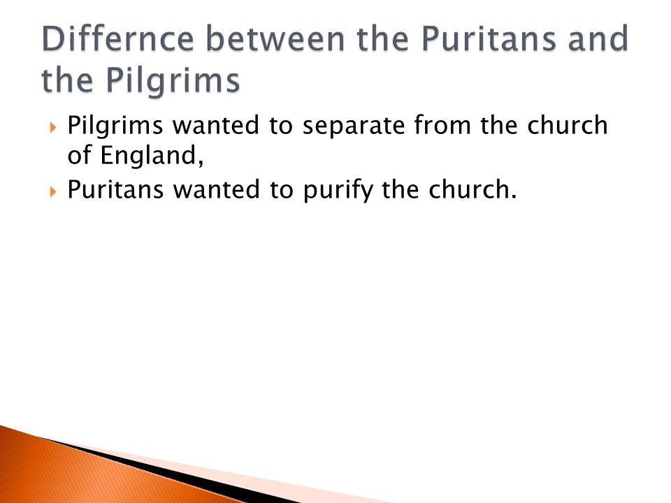 Differnce between the Puritans and the Pilgrims