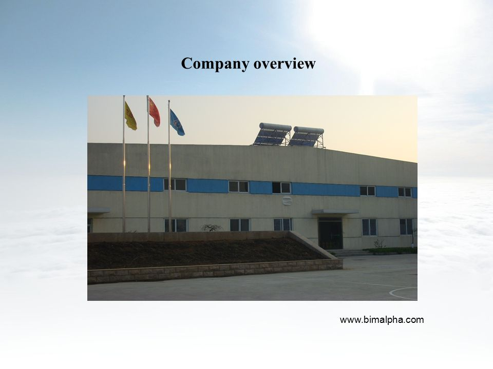 Company overview www.bimalpha.com