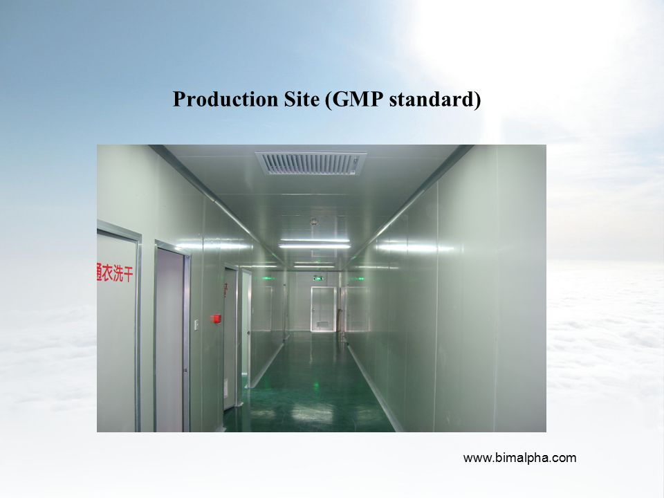 Production Site (GMP standard)