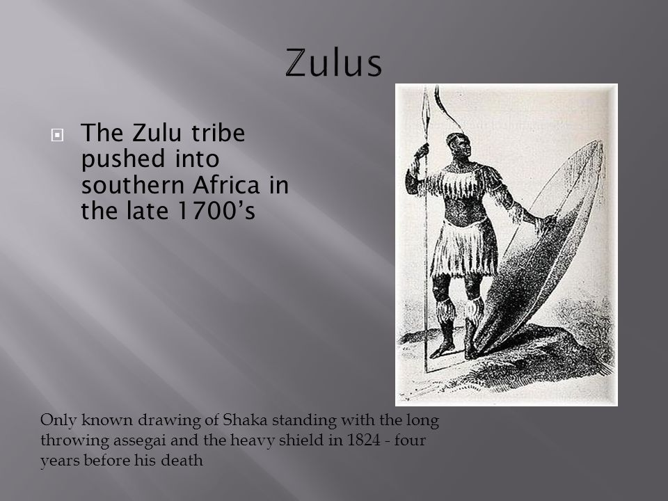 Zulus The Zulu tribe pushed into southern Africa in the late 1700's