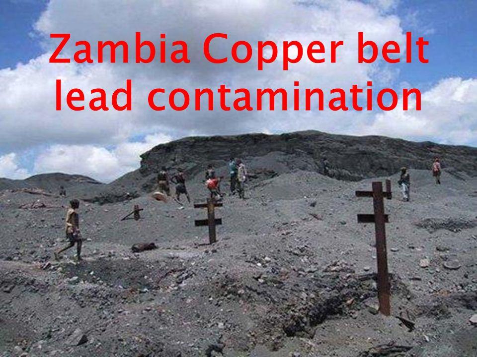 Zambia Copper belt lead contamination