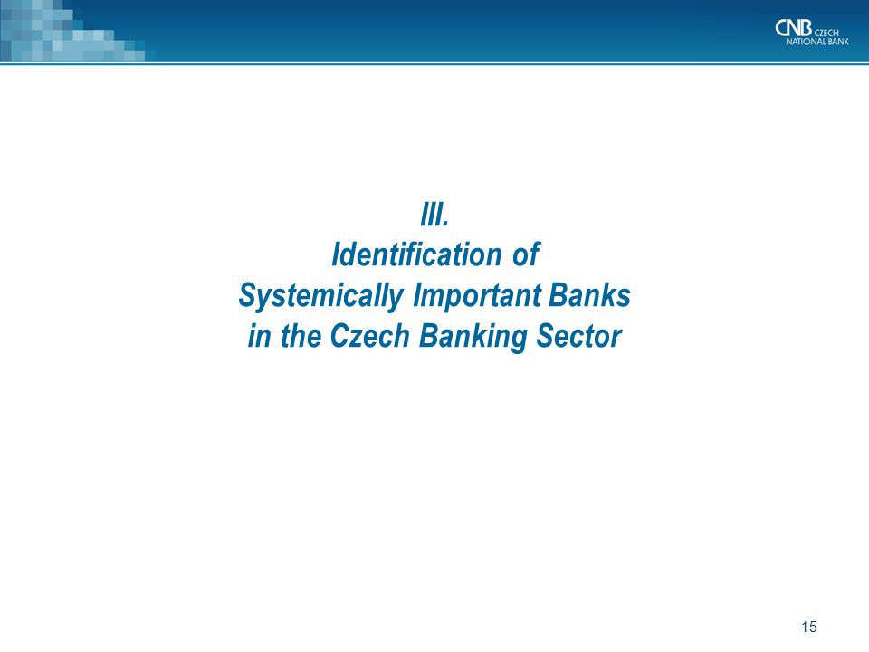 Systemically Important Banks in the Czech Banking Sector
