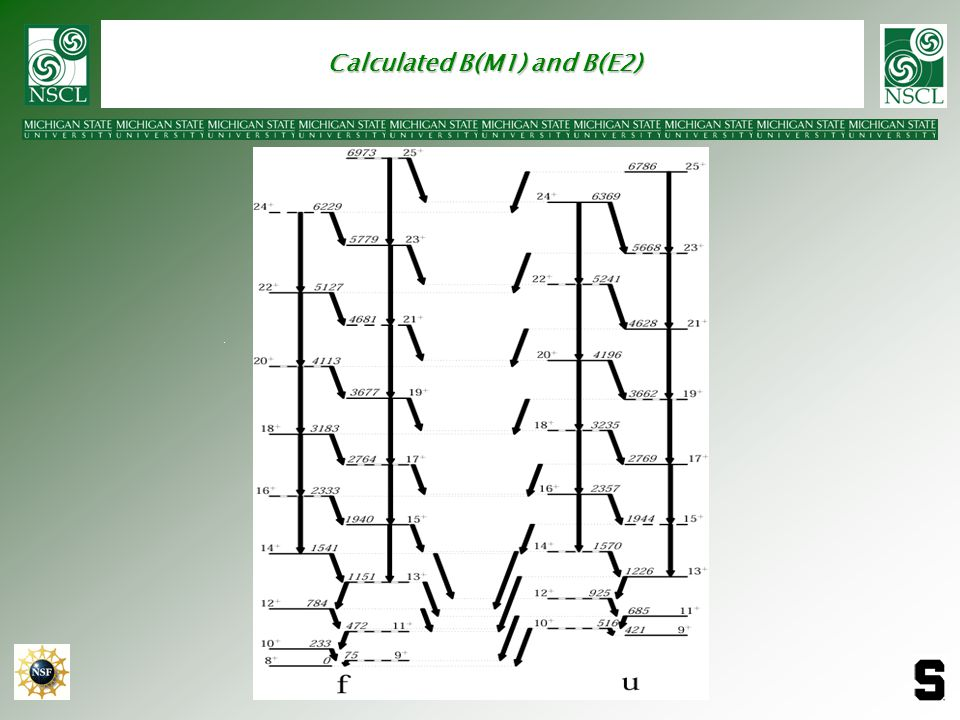 Calculated B(M1) and B(E2)