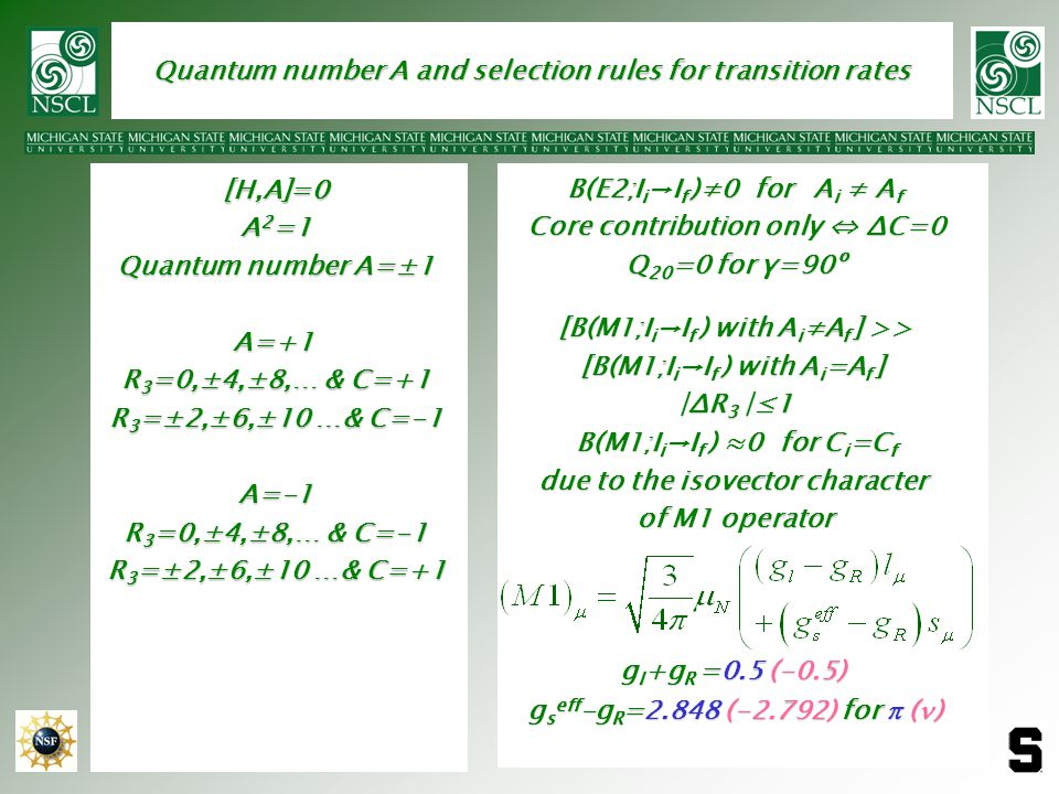 Quantum number A and selection rules for transition rates